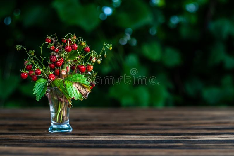 fraisier commun de bouquet dans des séjours transparents de verre à liqueur sur la table en bois brune avec les feuilles vertes s photos libres de droits
