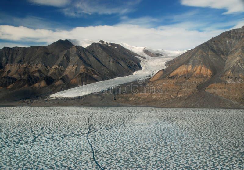 Frajera lodowiec Ellesmere wyspa zdjęcie royalty free