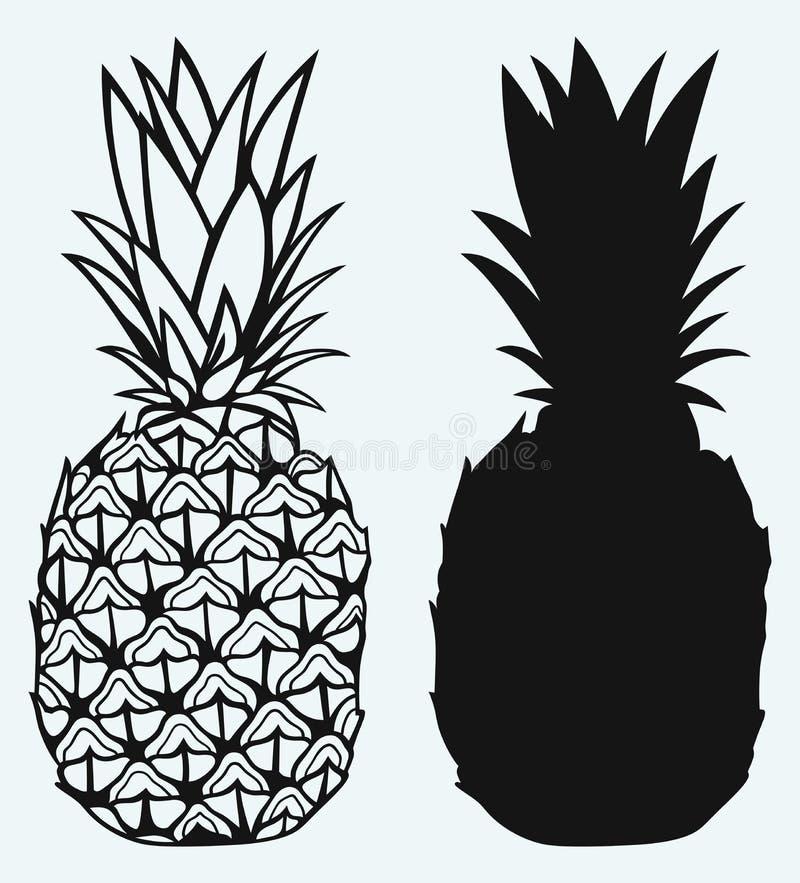 Framboesa madura com o abacaxi saboroso do leafRipe ilustração do vetor