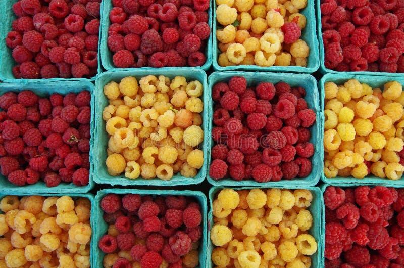 Framboesas vermelhas e amarelas fotos de stock royalty free