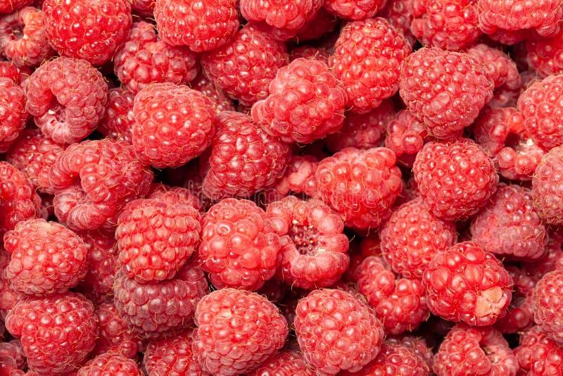 Framboesas vermelhas e maduras como um fundo fotos de stock