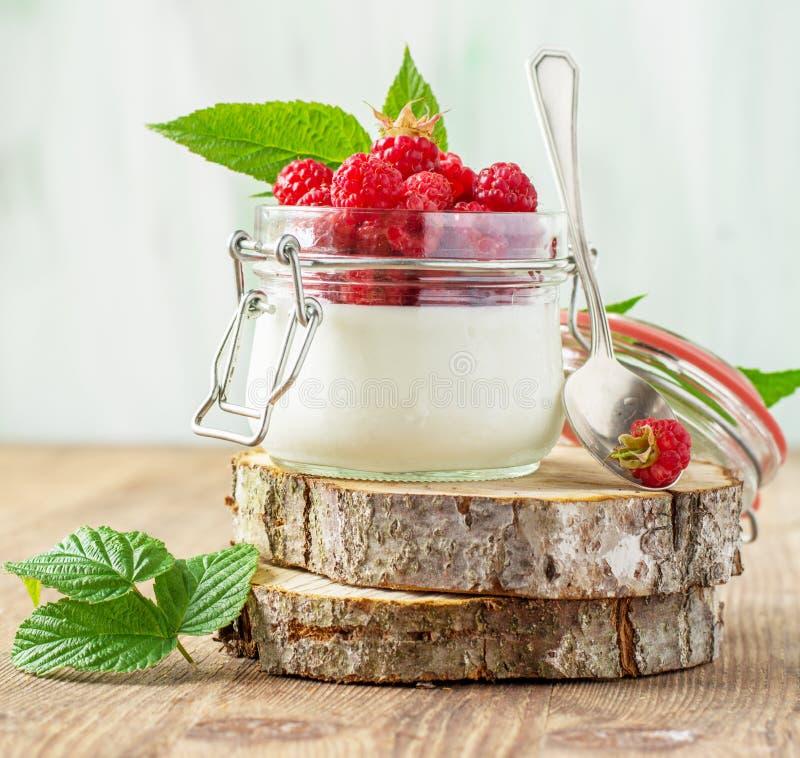 Framboise et yaourt photos stock