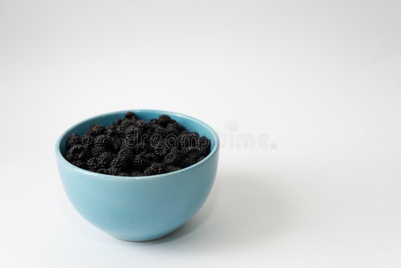 Framboise noire dans une cuvette bleue Framboise organique sur le fond clair avec l'espace de copie pour le texte m?re d'isolemen photo stock