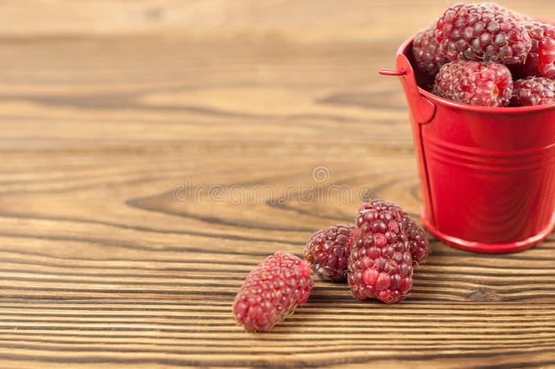 Framboises et seau frais rouges en métal photographie stock