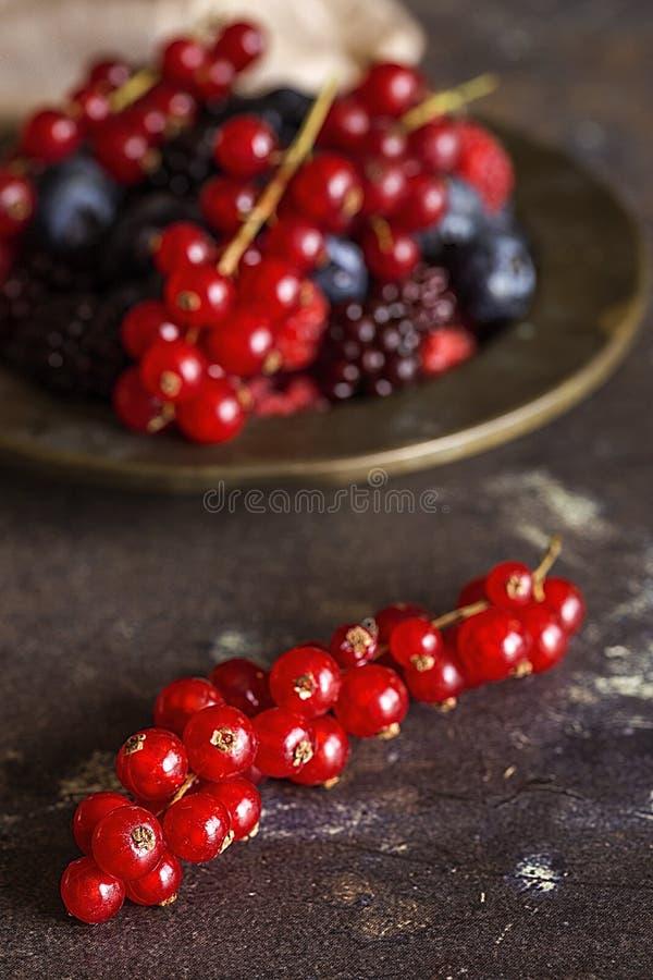 Framboises organiques, myrtilles et baies rouges photo stock