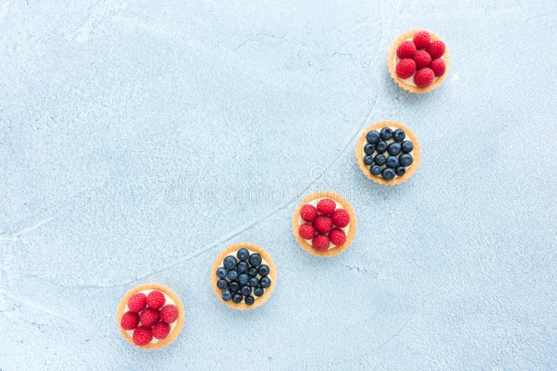 Framboos en Bosbes Tartlets met Citroen Curd Cream stock afbeelding