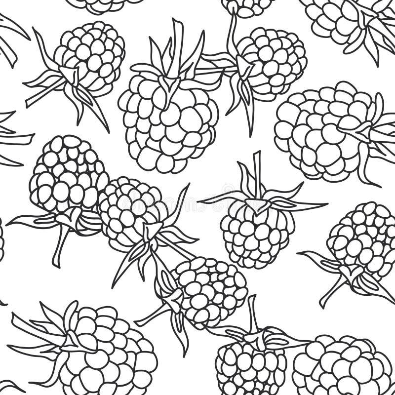 Frambozenbraambes met bladeren naadloze pettern op geïsoleerd op witte achtergrond voor plaats, blog, kleurend boek, stof Vector vector illustratie