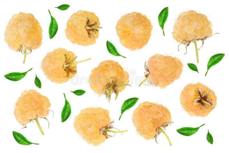 Frambuesas amarillas con la hoja aislada en el fondo blanco Visión superior Modelo plano de la endecha libre illustration