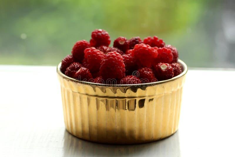 Frambuesas rojas y fresas salvajes en un plato fotografía de archivo