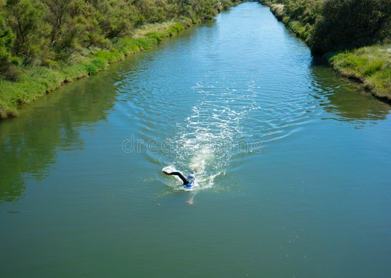 Framdel för simning för öppet vatten för man som kryper en flod i vendeen Frankrike arkivfoton