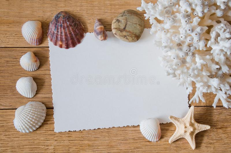 Frame of sea shells on a wooden table royalty free stock photography