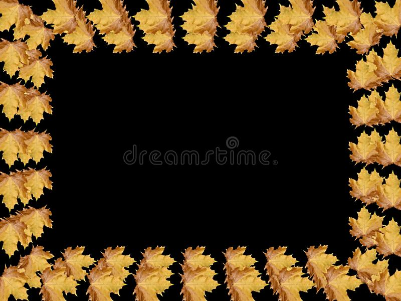 Download Frame stock illustration. Illustration of card, blank - 11151567