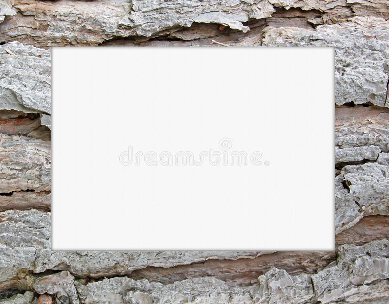 Frame. Pine tree bark rectangular frame royalty free stock photo