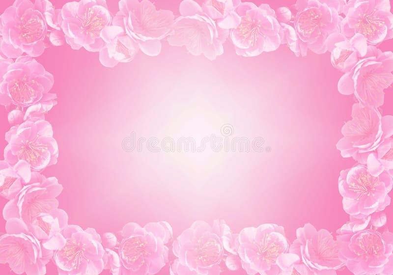 Frame 2 da flor imagem de stock