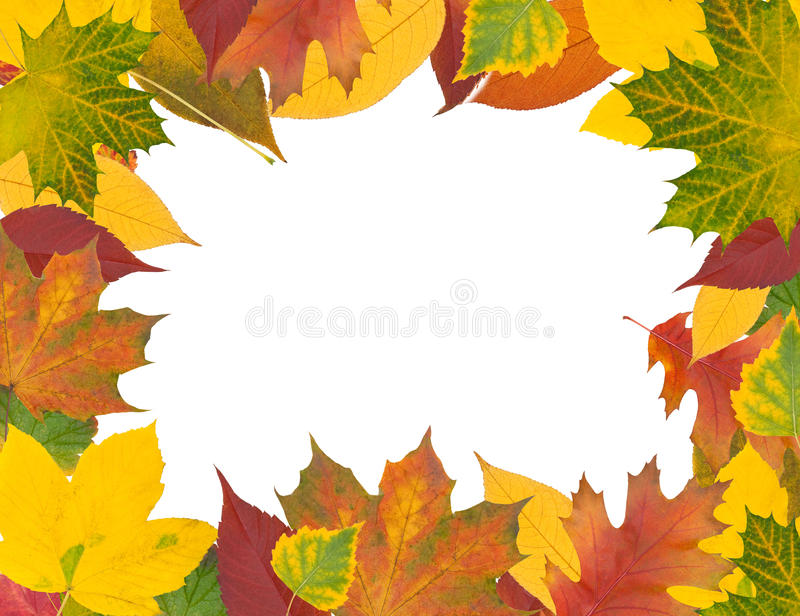 Frame from autumn leaves royalty free illustration
