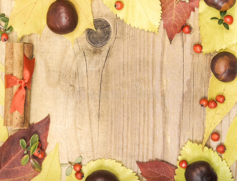 Frame autumn leaves and chestnuts. Frame autumn leaves and chestnuts on a wooden background royalty free stock photography