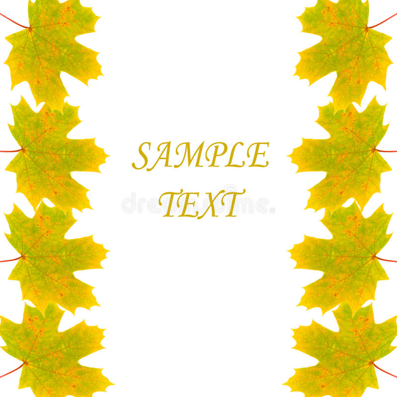 Download Frame Of Autumn Maple Leaves Stock Image - Image: 15263015