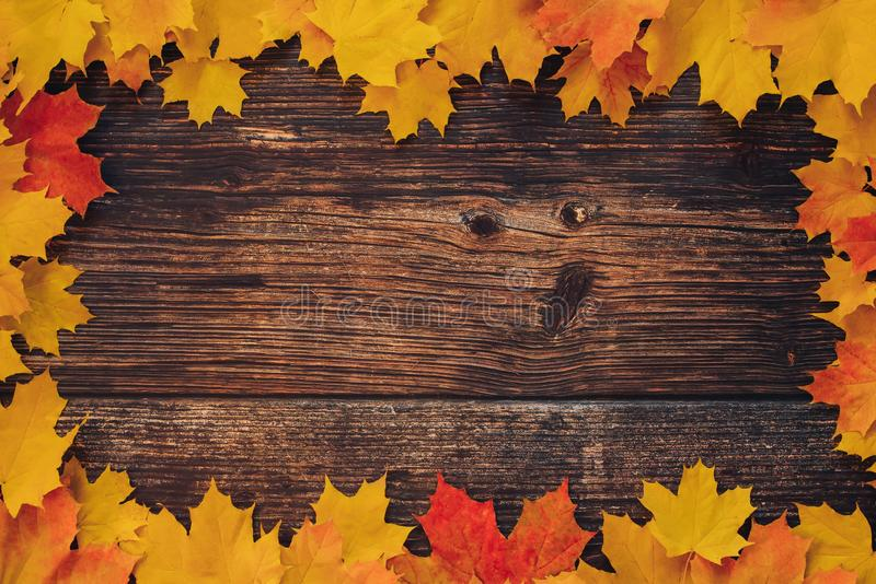 Frame of autumn orange yellow maple leaves on the background of old wooden boards royalty free stock photos
