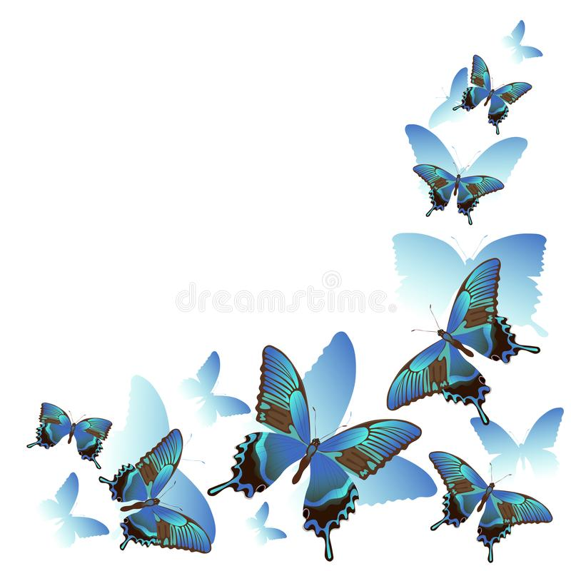 Frame of beautiful blue butterflies and silhouettes isolated on white background. For the design of wedding invitations, vector illustration