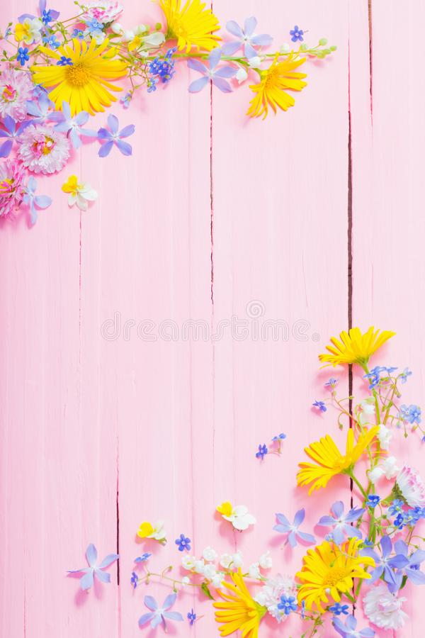 Frame of beautiful flowers on pink wooden background royalty free stock photos
