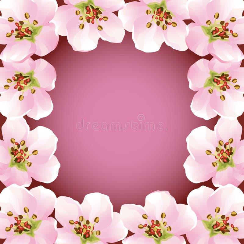Frame with blossoming sakura - japanese cherry tre stock illustration