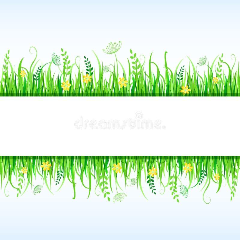 Frame bonito da grama ilustração royalty free