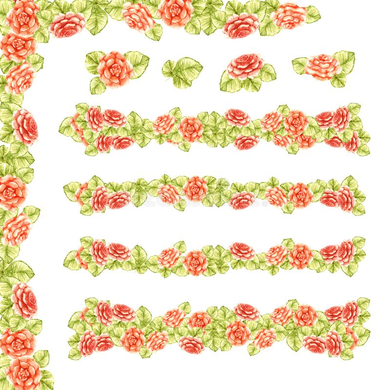 Frame border of a line of peach gentle roses with green leaves garden blooming pattern isolated on white background. Frame border of a line of peach light gentle royalty free illustration