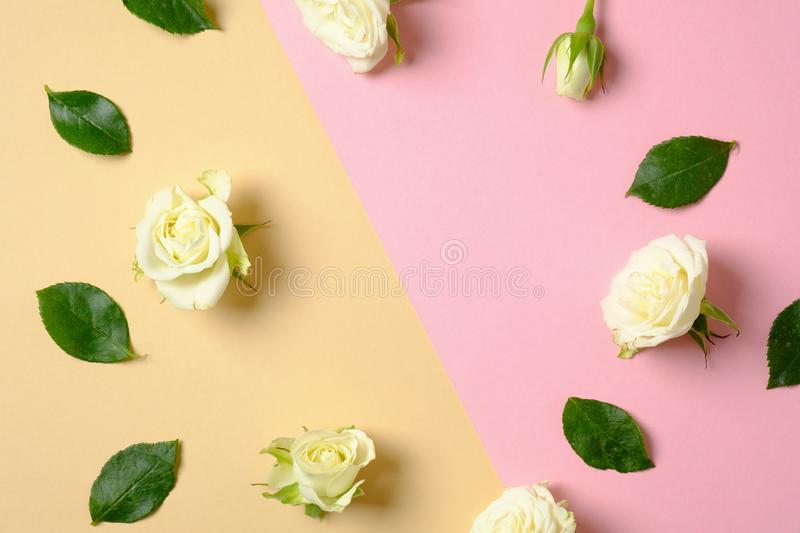 Frame border made of scattered leaves and roses flowers on pastel pink and yellow background. Spring flower, trendy minimal layout stock image