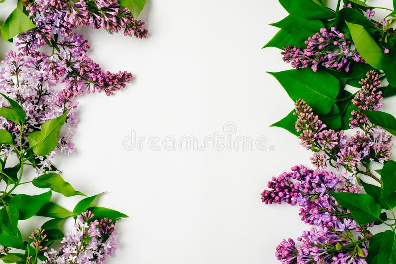 Frame border of purple lilac flowers on white background. Flat lay floral composition, top view, overhead. Spring background, stock photo