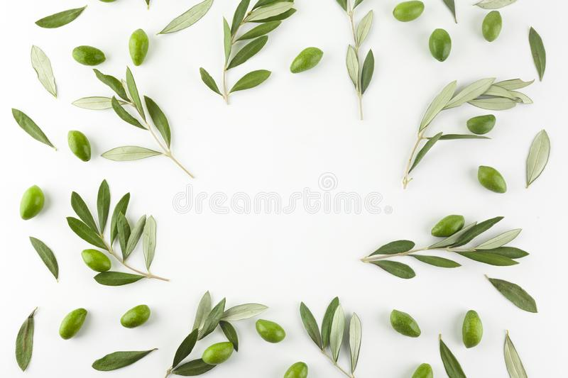 Frame or borders made of fresh green olive fruit with leaves on white background. Top view. stock image