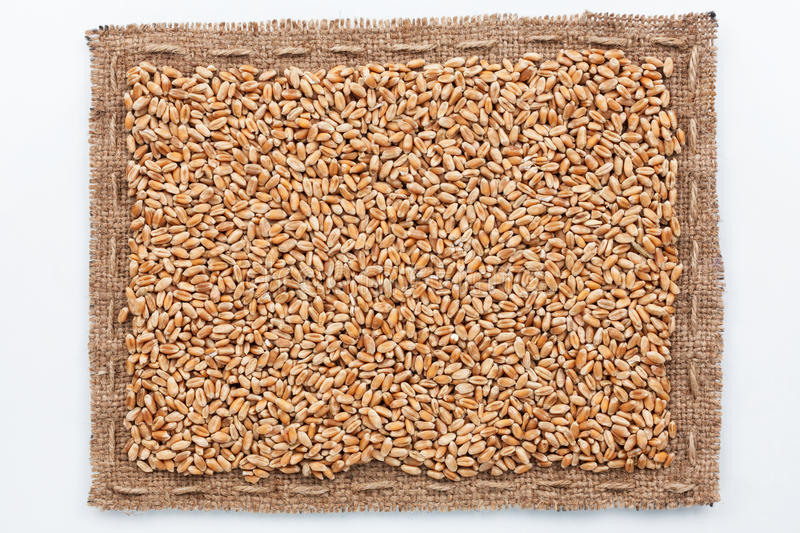 Frame of burlap and wheat grain royalty free stock images