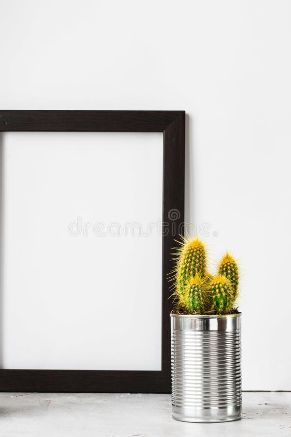 Frame with cactus in metal can on grey cement floor stock photography