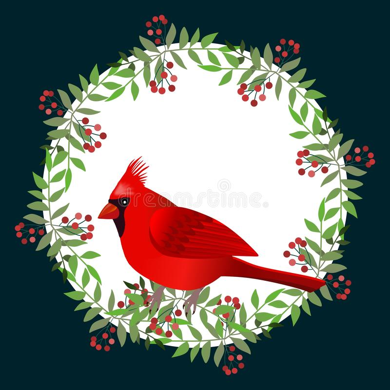 Frame with cardinal bird on branches with berries. Illustration. vector illustration