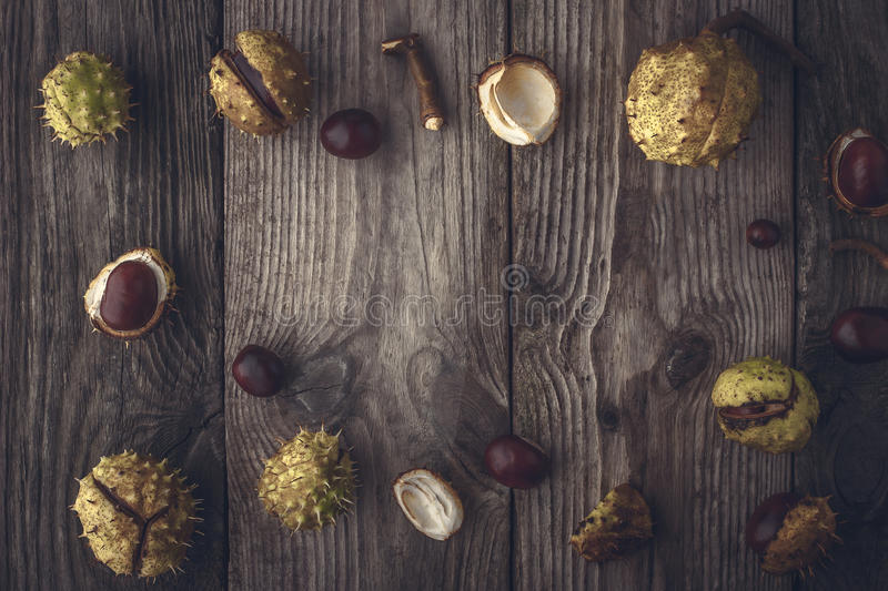 Frame of chestnuts on the wooden background horizontal with film filter effect. Frame of the small and big chestnuts on the wooden table horizontal with film stock image