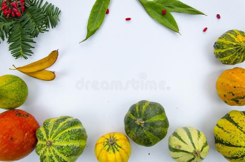 Frame from colorful decorative pumpkins ,dry leaves and berries, on a wooden table. Autumn mockup flat lay design. Frame with pumpkins on a wooden table. Autumn stock image