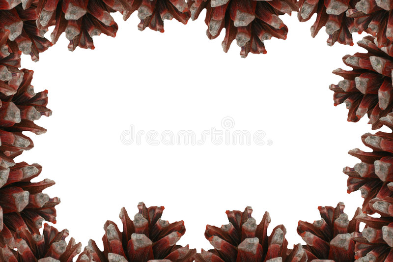 Frame with cones royalty free stock photo