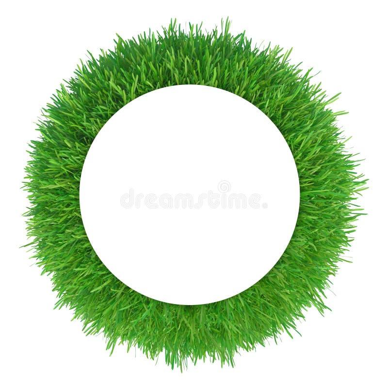 Frame da grama verde ilustração do vetor