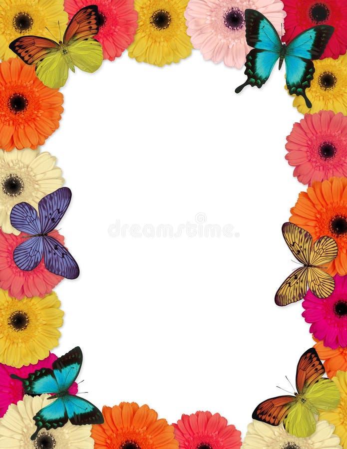 Frame das borboletas & das margaridas ilustração royalty free