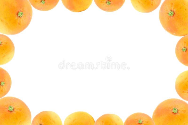Frame de alta resolução decorado com frutas alaranjadas fotografia de stock royalty free