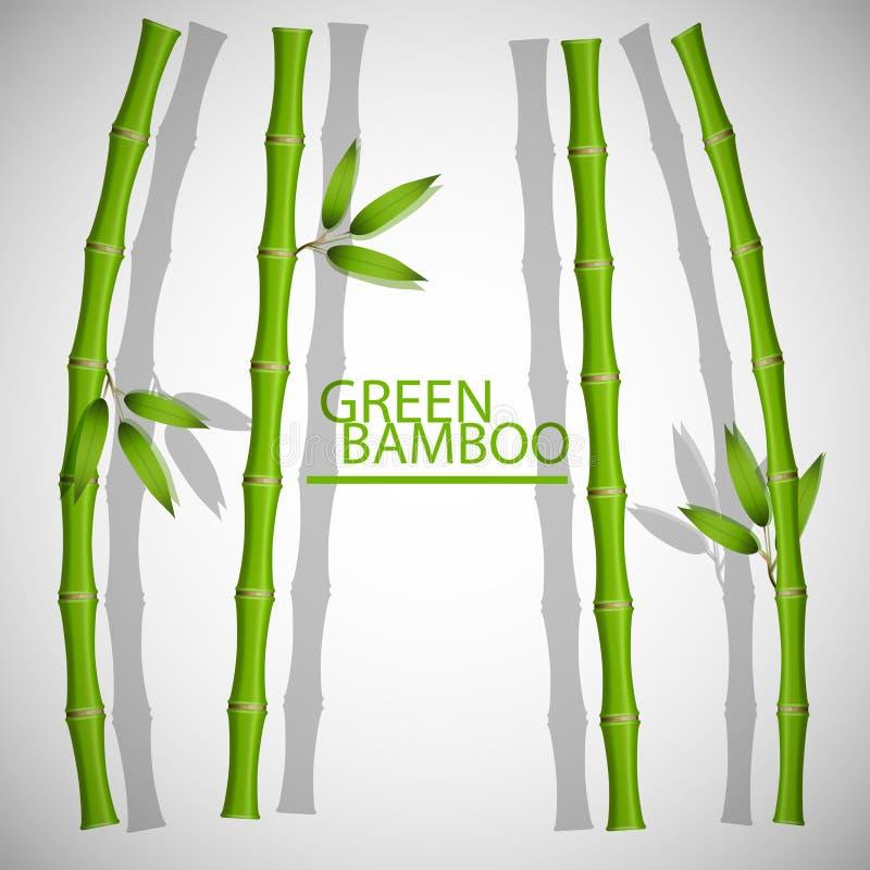 Frame de bambu Vector a ilustração, EPS10 ilustração stock