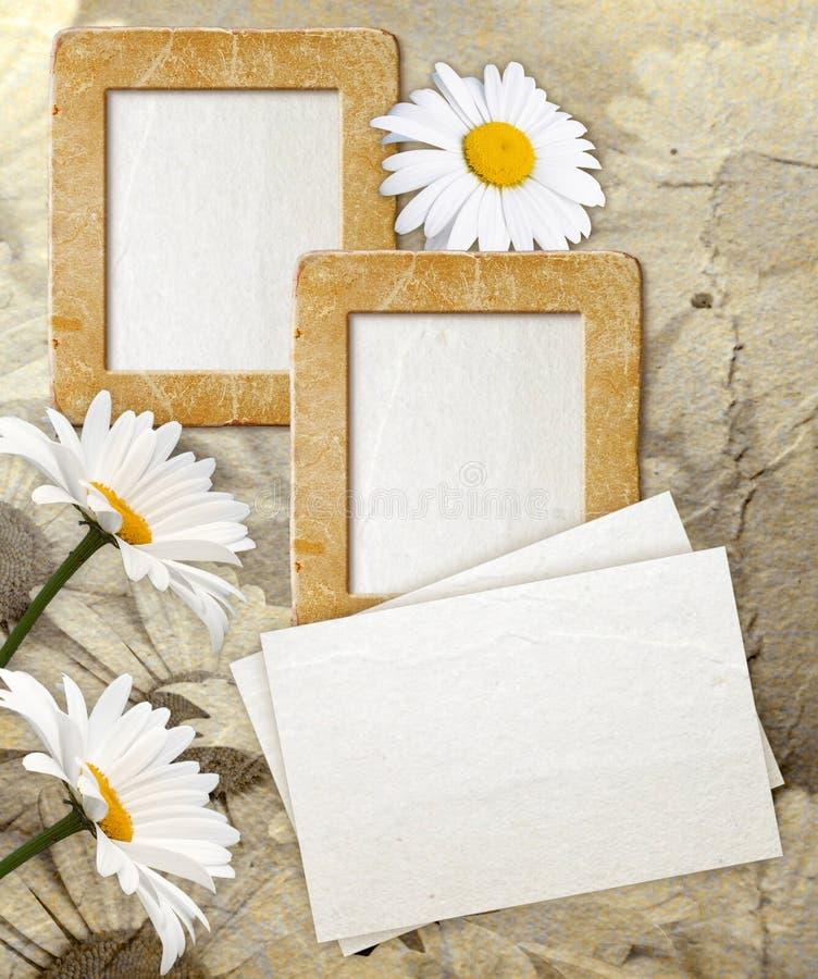 Frame de Grunge com margarida e papel imagens de stock