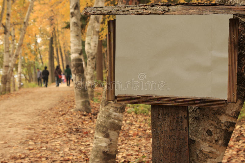 Frame de madeira em branco foto de stock royalty free