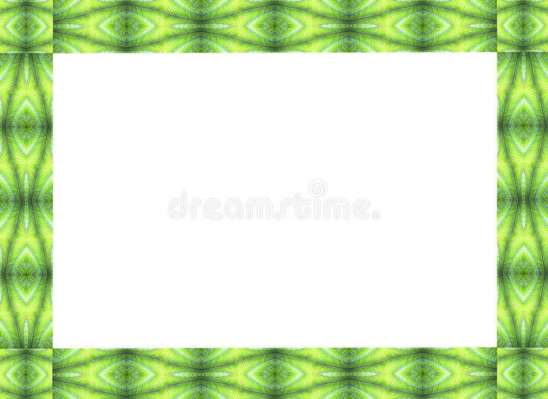 Frame design of palm fronts. Natural frame design, made of green palm fronts stock image