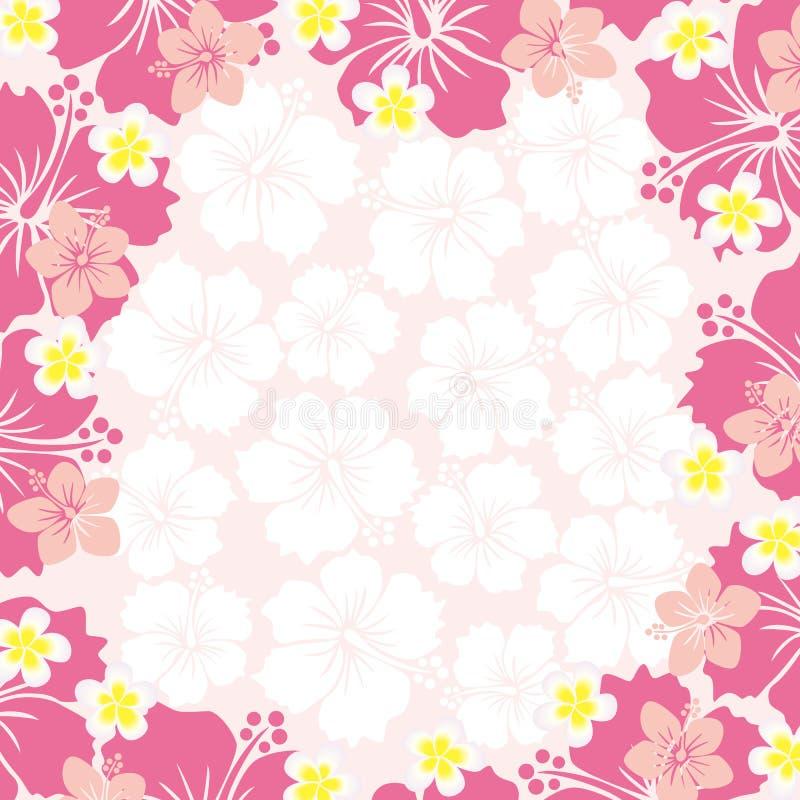 Frame do hibiscus ilustração stock
