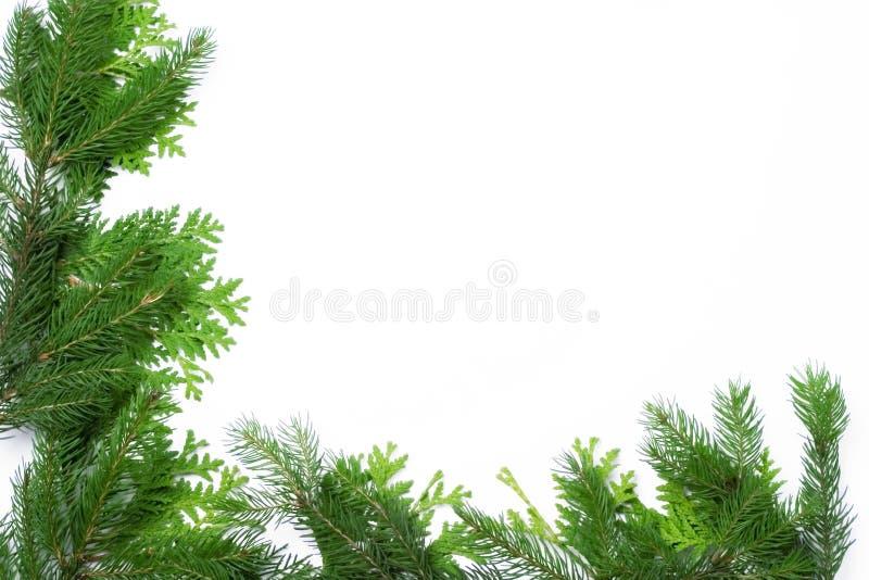 Frame do Natal imagem de stock