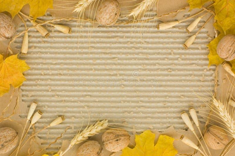 Frame do outono foto de stock