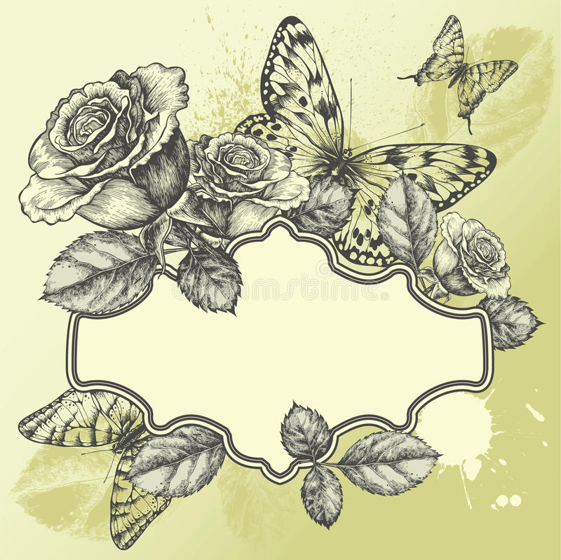 Frame do vintage com rosas e as borboletas de florescência, ilustração do vetor