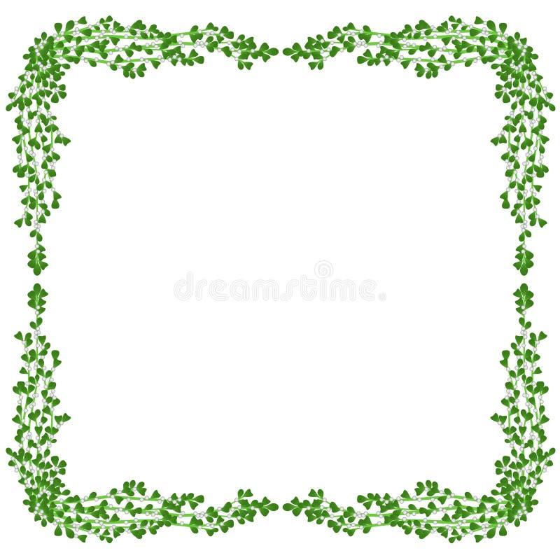 Frame do visco ilustração royalty free