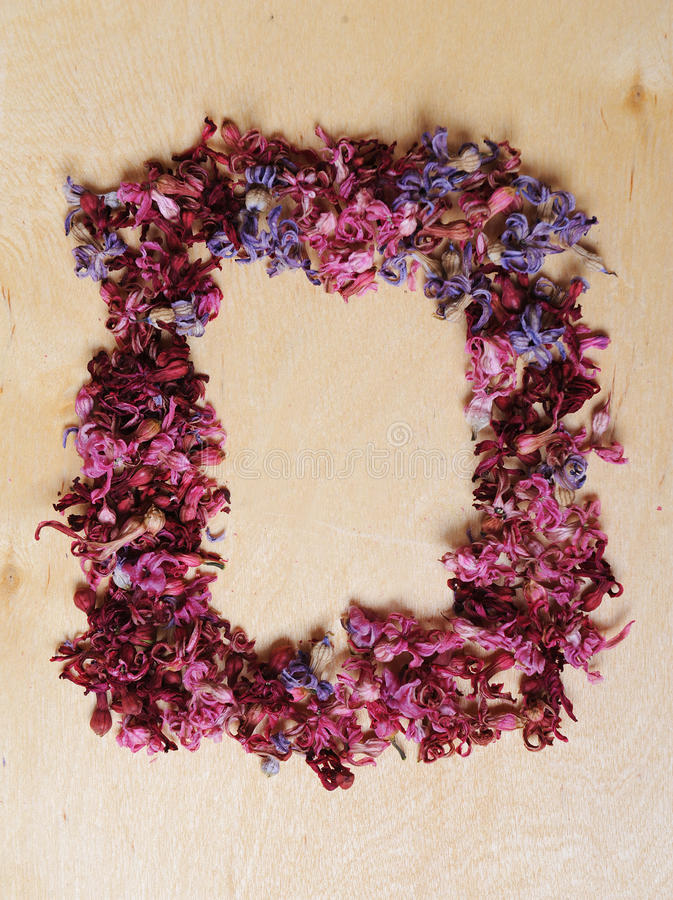 Frame of dried flowers on a wooden background. Vintage royalty free stock image