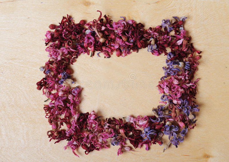Frame of dried flowers on a wooden background. Vintage royalty free stock photography